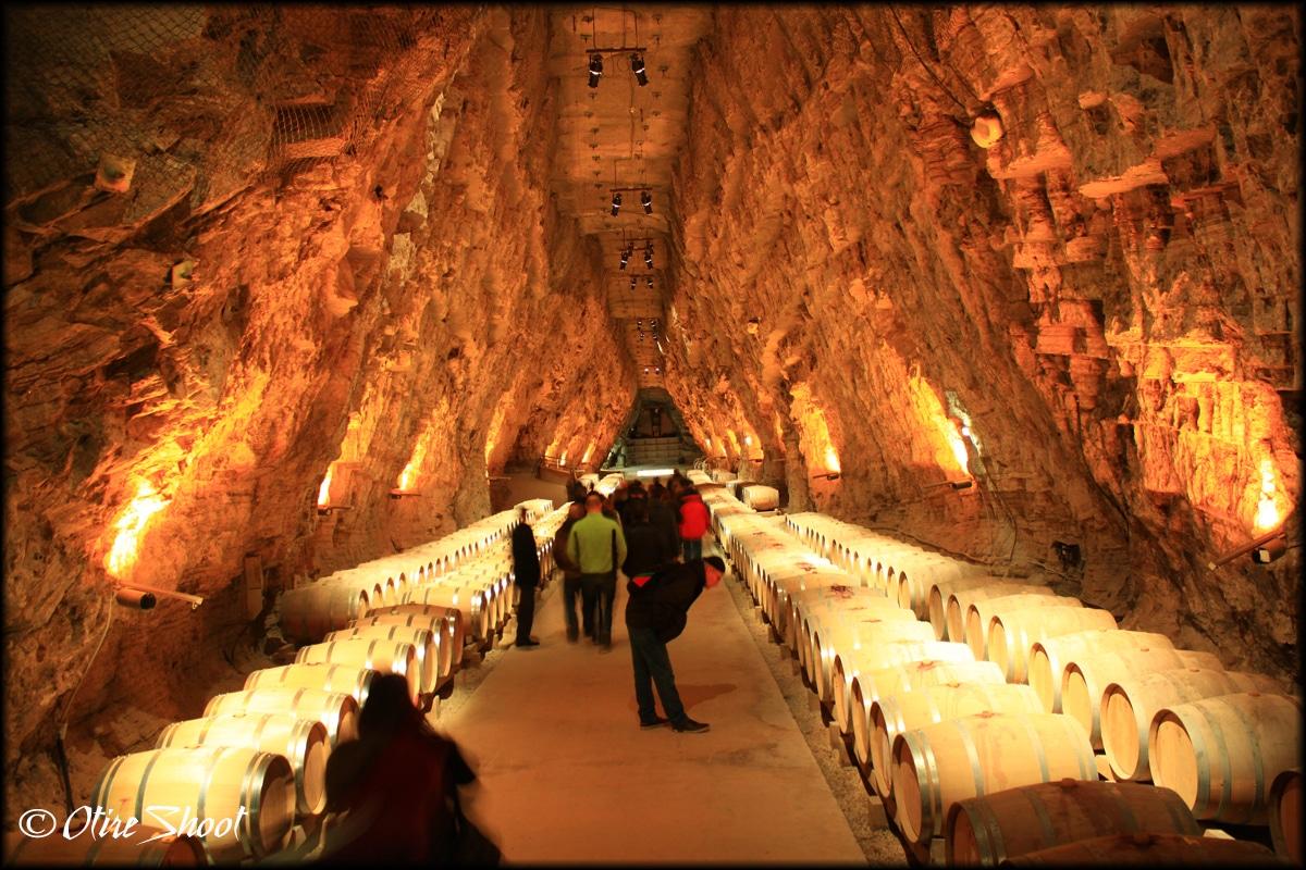 Une Cave A Vin cave à vin: ce qu'il faut savoir avant d'acheter